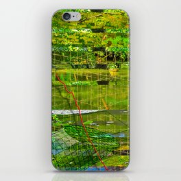 Landscape of My Heart (segment 3) iPhone Skin