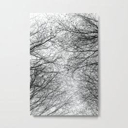 Tree Silhouette Series 5 Metal Print