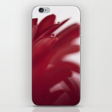 Love Drops iPhone & iPod Skin