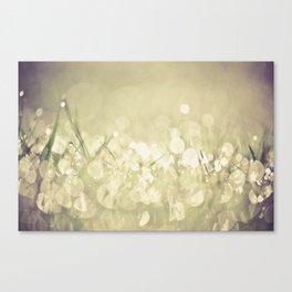 morning dew no.3 Canvas Print