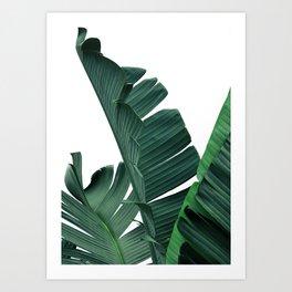 Tropical Leaf Print, Botanical Wall Art Print, Banana Leaf Print ,Tropical Decor Art Print