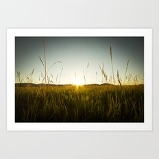 Colorado Sunset Art Print