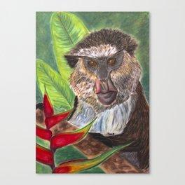 Mona Monkey Canvas Print