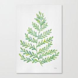 Fern Leaf Canvas Print