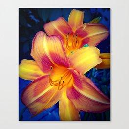 Lilies 3 Canvas Print