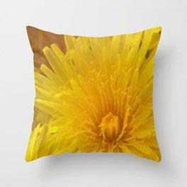Dandelion DP20170416d Throw Pillow