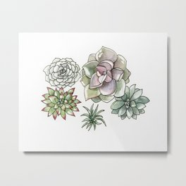 Succulents Watercolor Metal Print