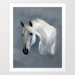 Arabian soul Art Print