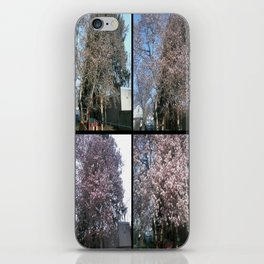 Tree Blossoms iPhone Skin