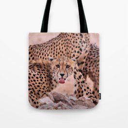 Cheetah Brothers of the Kalahari Tote Bag