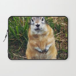 Cute And Furry By LyubovArt Laptop Sleeve