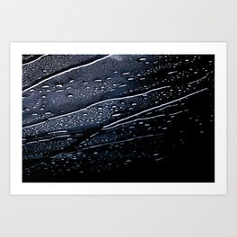 Rainscape Art Print