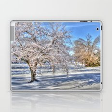 After Ice Storm Laptop & iPad Skin