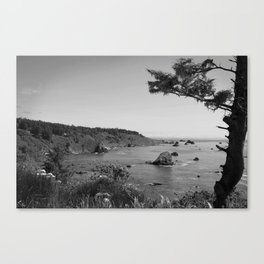 Patricks Point State Park Canvas Print