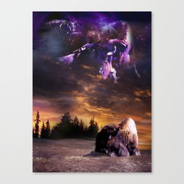 Bufalo Nights Canvas Print
