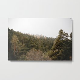 The call of the forest Metal Print