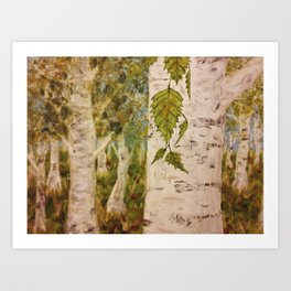 Birch Forth into Song Art Print