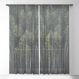Aerial Photograph of a pine forest in Germany - Landscape Photography Sheer Curtain