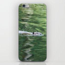 Beaver on an Evening Swim iPhone Skin