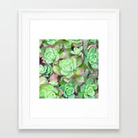 succulents Framed Art Prints featuring Succulents  by Lisa Argyropoulos