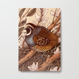 Little Quail Metal Print