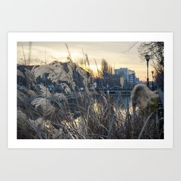 Nature vs City Art Print
