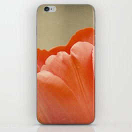 Orange Tulip iPhone Skin