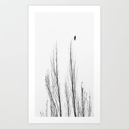 Her Trust Is Not On the Branch Art Print