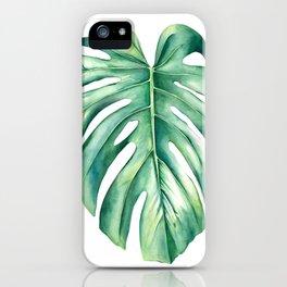 Costilla de Adán / Monstera deliciosa iPhone Case