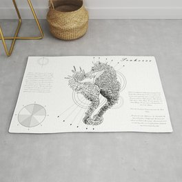 Geometry of a Seahorse Rug