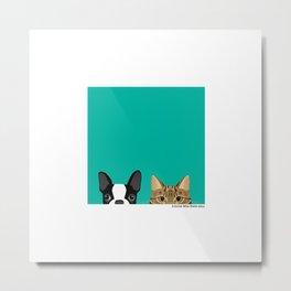 Boston Terrier & Tabby Metal Print