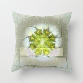 Fugler Beauty Flowers  ID:16165-063310-40571 Throw Pillow