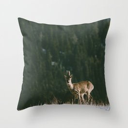 Hello spring! - Landscape and Nature Photography Throw Pillow