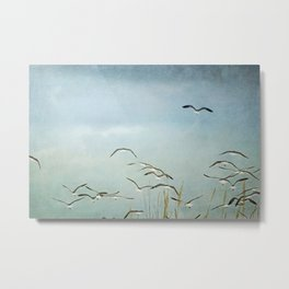 Gull Flock on the Wing Metal Print