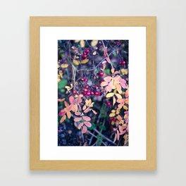 Forbidden 2 Framed Art Print