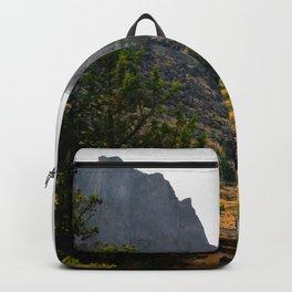 Desert Rock Valley Backpack