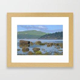 ORCAS ISLAND LOW TIDE MORNING ON TURTLEBACK MOUNTAIN Framed Art Print