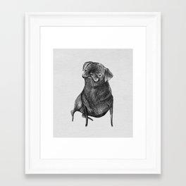 Le Carlin Noir Framed Art Print