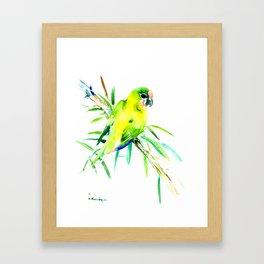 Green-Yellow Parrot, yellow green room design Framed Art Print