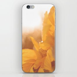 Sun Flare Sunflower iPhone Skin