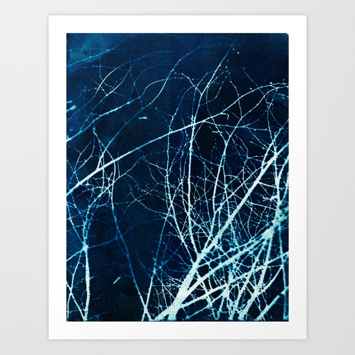 Twigs in Winter Cyanatope Print Art Print