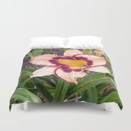 Pink daylily growing in Queensland Duvet Cover