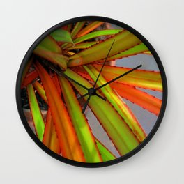 Baby Srew Pine Wall Clock