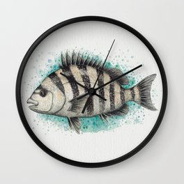 """Sheepshead Splash"" by Amber Marine ~ Watercolor Fish Painting (Copyright 2016) Wall Clock"