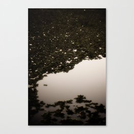 Swamp Ghosts Canvas Print