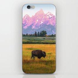Grand Tetons Bison iPhone Skin