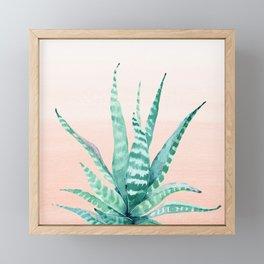 Desert Succulent Aloe Vera Framed Mini Art Print