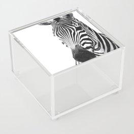 Black and white zebra illustration Acrylic Box