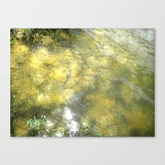 On a Hot Summer Day Canvas Print