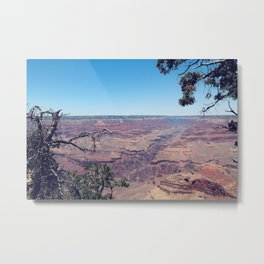 desert at Grand Canyon national park, USA in summer Metal Print